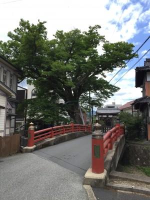 kaibara-sansaku
